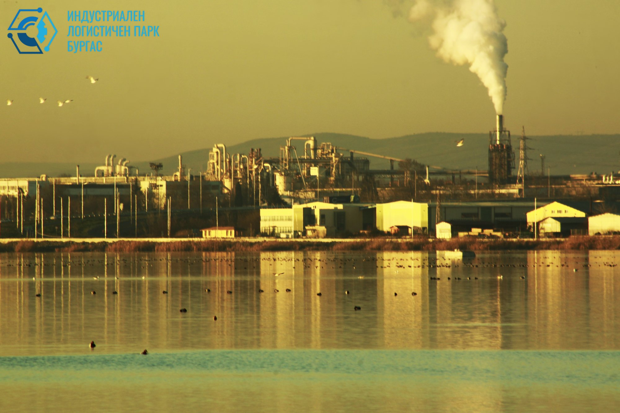 Симбиоза/как се живее в района на Индустриален парк/